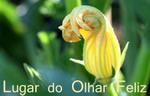 Lugar_de_olhar_feliz